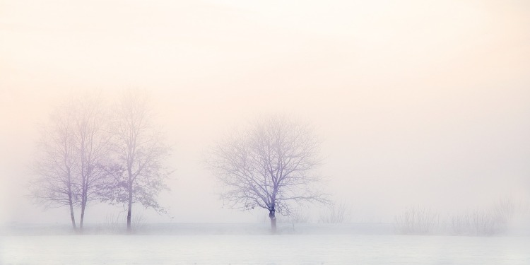 winter-landscape-2571788_1280